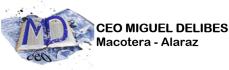 CEO Miguel Delibes